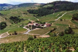Domaine Cheysson