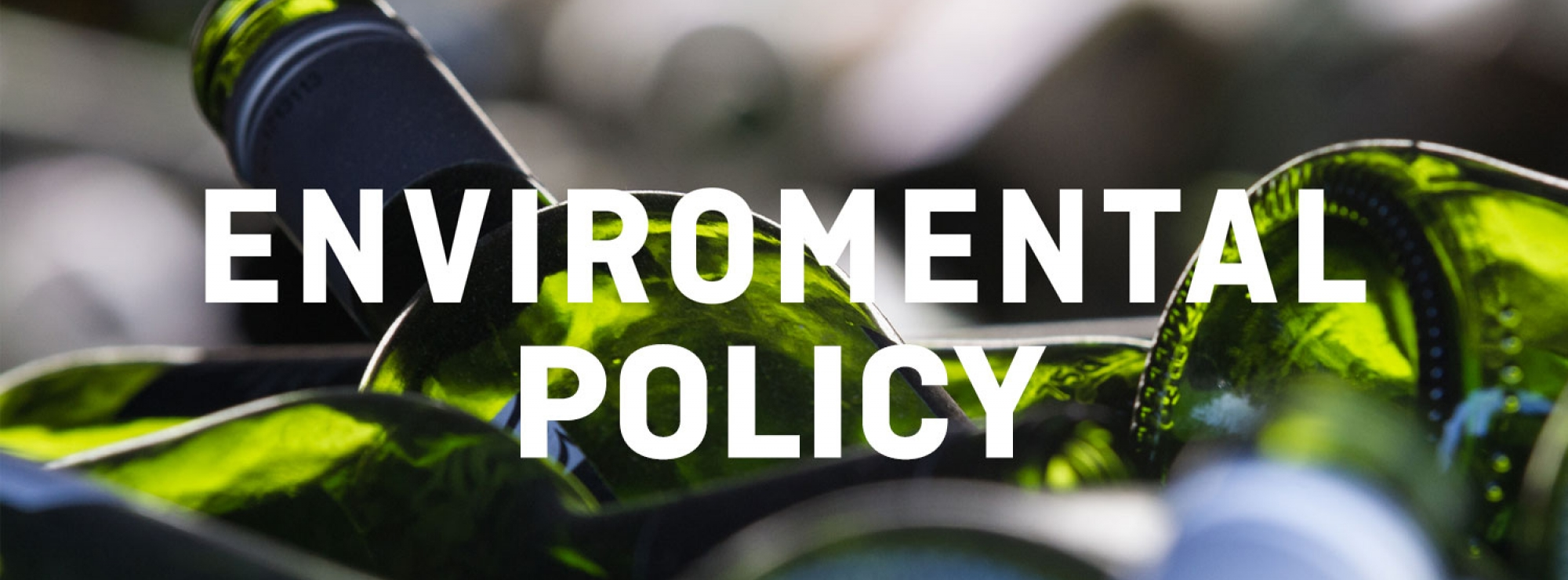Environmnetla policy