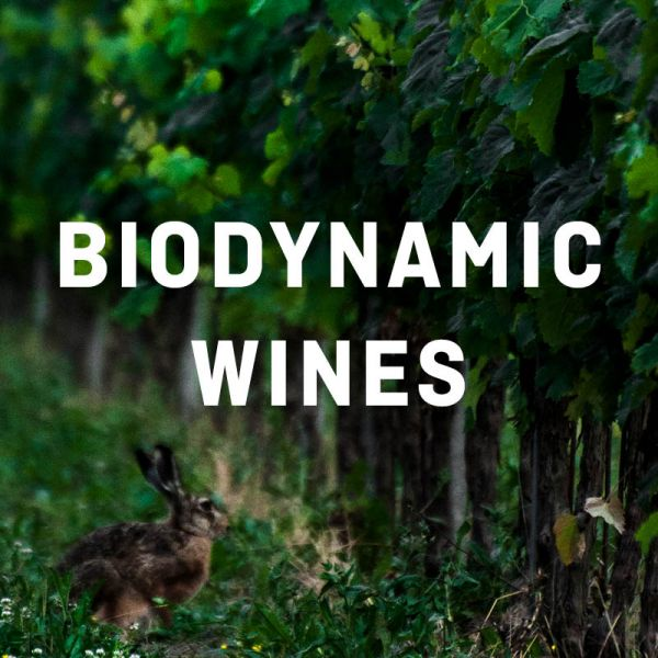 Biodynamic Wines