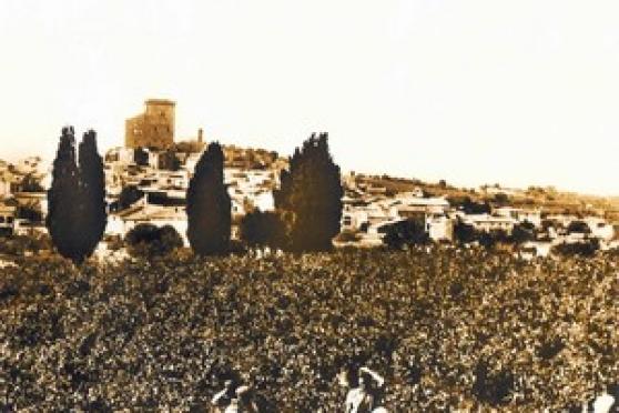 Domaine des Péres de l'Eglise