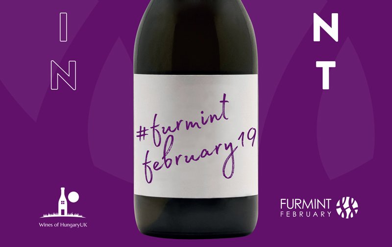 https://www.jascots.co.uk/media/images/uploaded/furmint-february.1745.featured.jpg