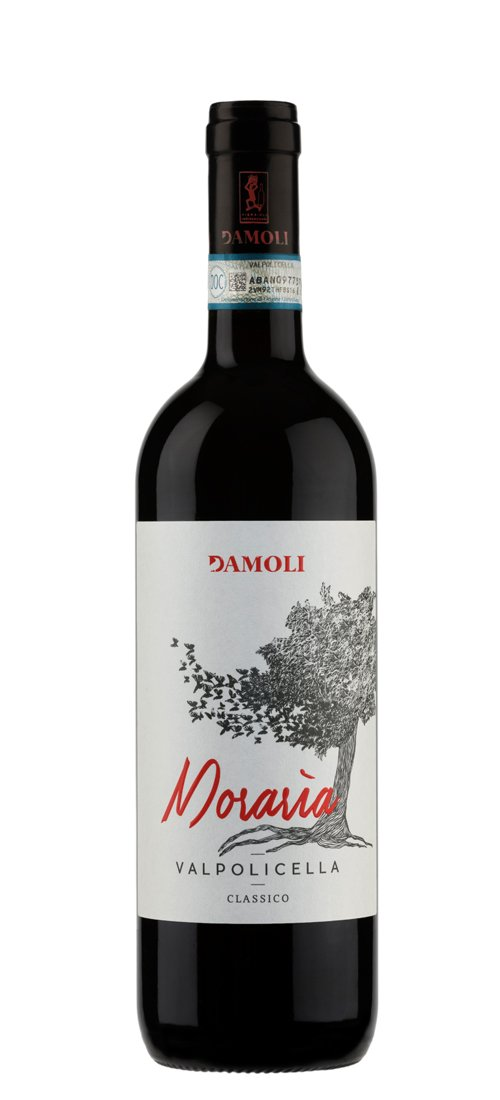 DAMOLIVALPO17