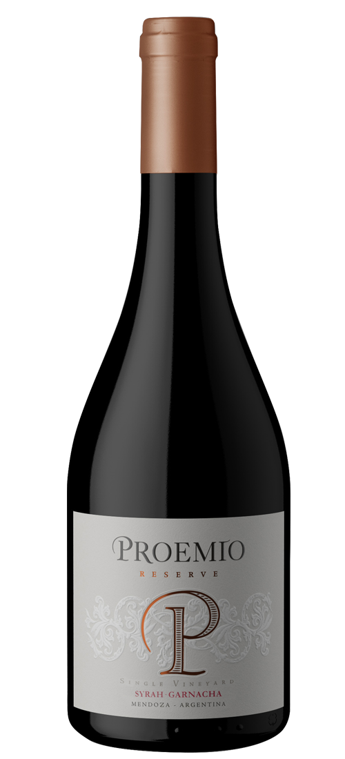 PRORESSYGA19(X6)