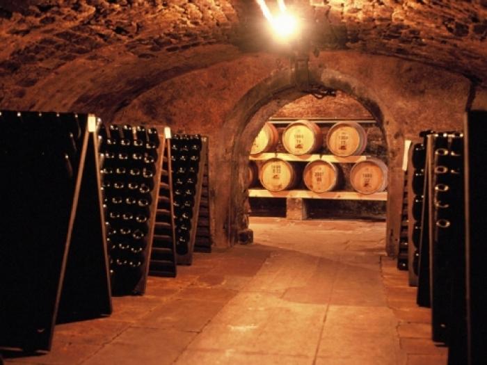 The Cellars at Reichsrat Von Buhl